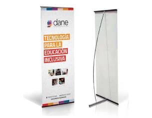 Proyecto DANE